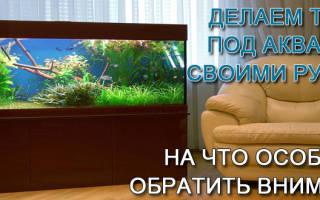 Нюансы размещения стола-аквариума, изготовление своими руками